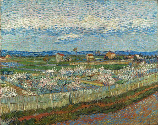 Vincent Van Gogh: Peach Blossom in the Crau